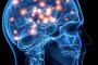 أخبار علمية : كيف تتخذ القرارات المعقدة في الدماغ البشري.