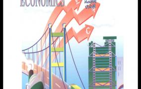 كتاب الاقتصاد الإداري - د. أيمن صالح فاضل.