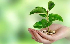 E-learning on :Introduction to Green Economy